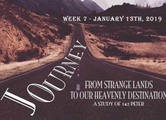 Journey: Week 7