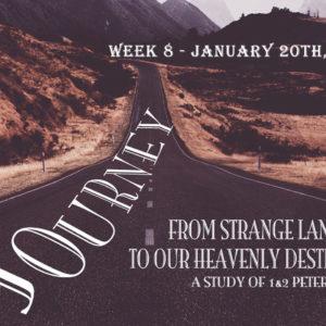 Journey: Week 8