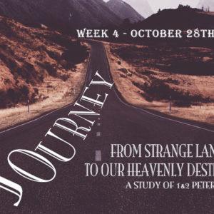 Journey: Week 4